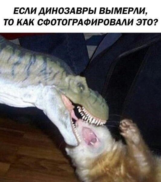 Картинки по запросу приколы с динозаврами